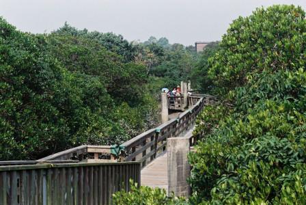 HK_Wetland_Park_09