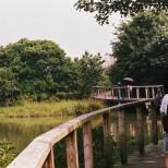 HK_Wetland_Park_11