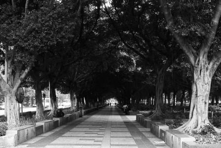 guangzhou_19a